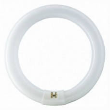 Лампа кругла люмінесцентна Ø9 Ø2W Zhongdi